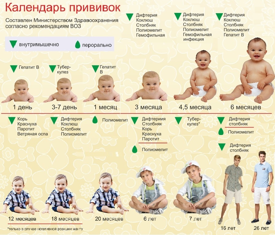 Составить календарь прививок для детей