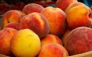Бывает ли у детей аллергия на нектарин и персики: что именно вызывает реакцию, симптомы и проявления