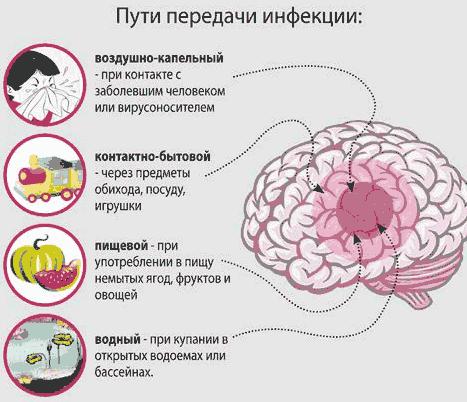 пути передачи менингита