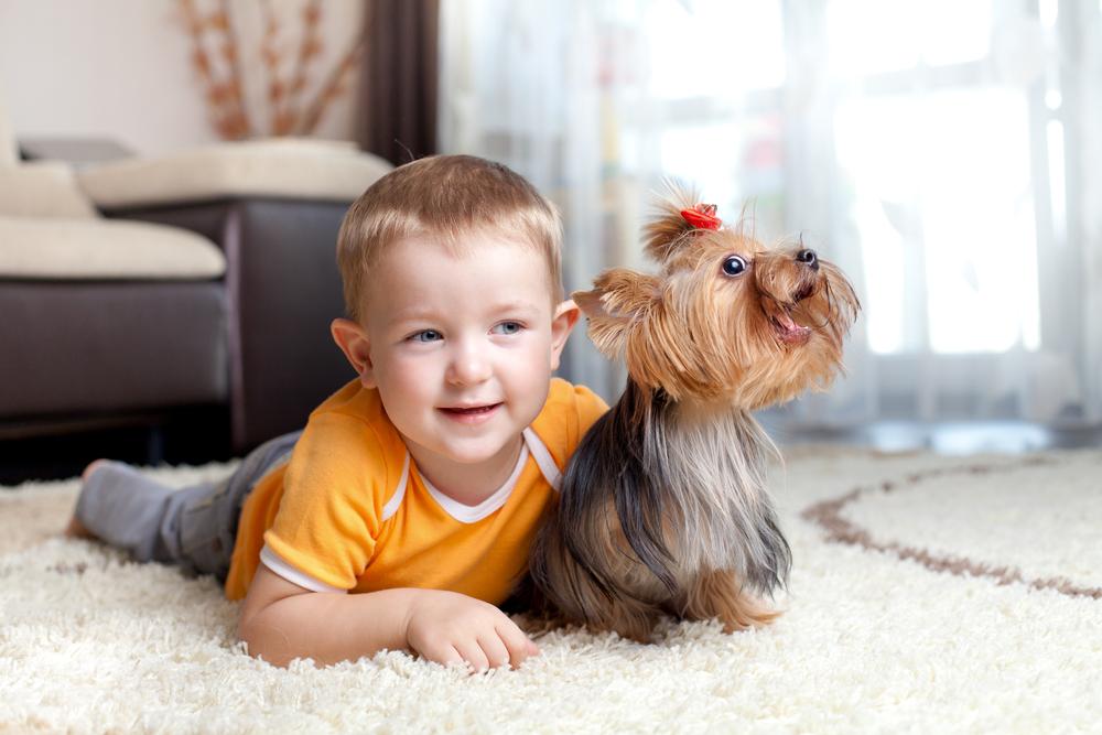 мальчик лежит на полу с собакой
