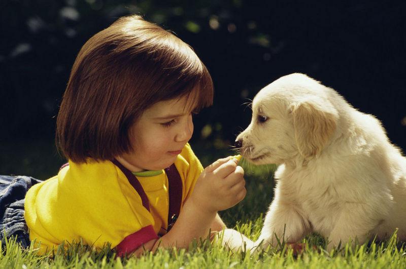 девочка с щенком лежат на траве