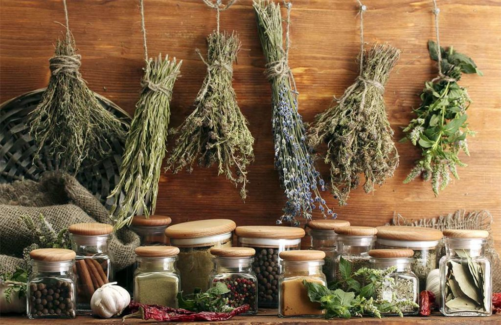 различные сушеные травы висят на стене и стоят в баночках на столе