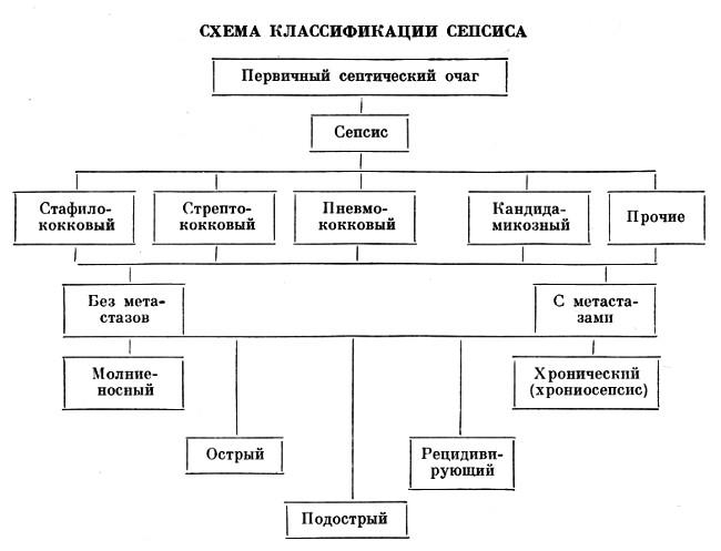 схема развития сепсиса