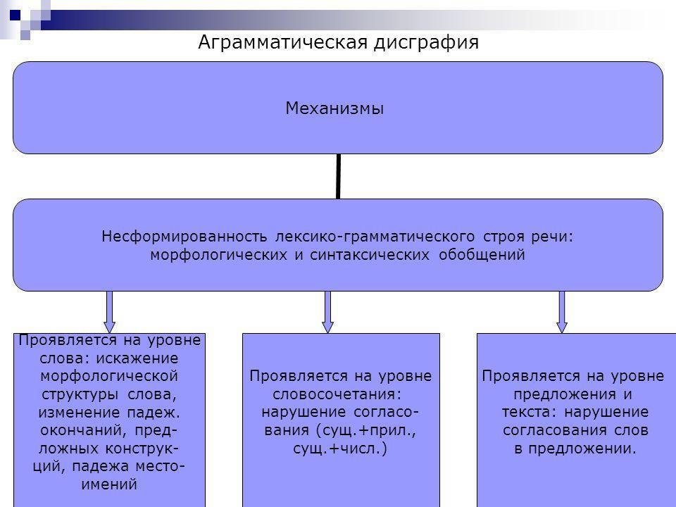Аграмматическая дисграфия схема