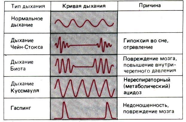 Патологические типы дыхания