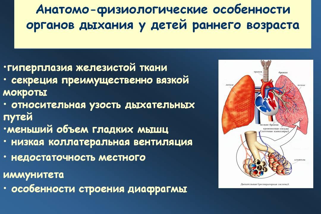 Анатомо-физиологические особенности органов дыхания у детей