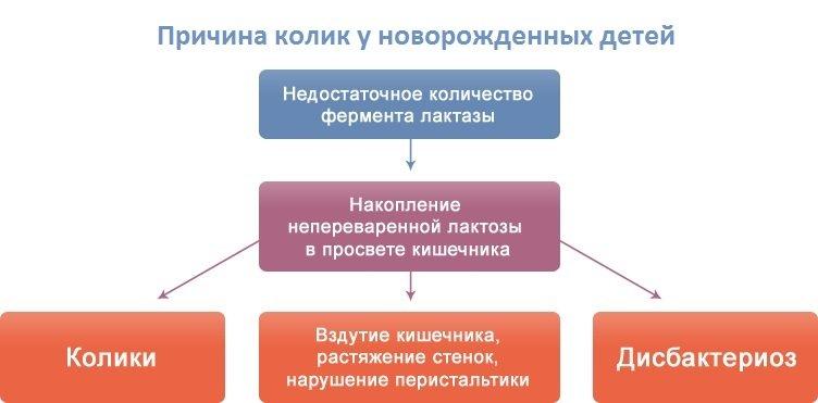 Причины колик - схема