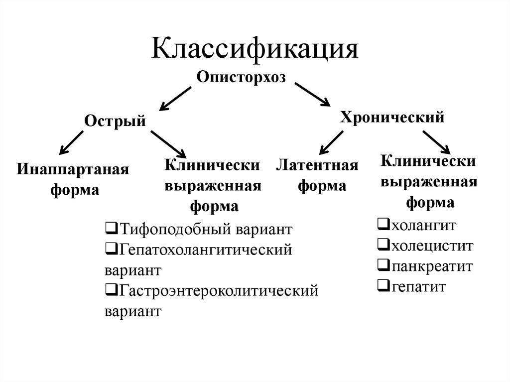 Классификация описторхоза