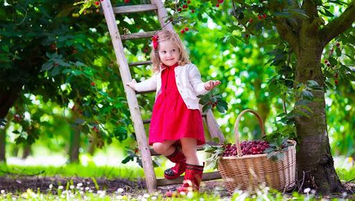 ребенок с корзиной черешни