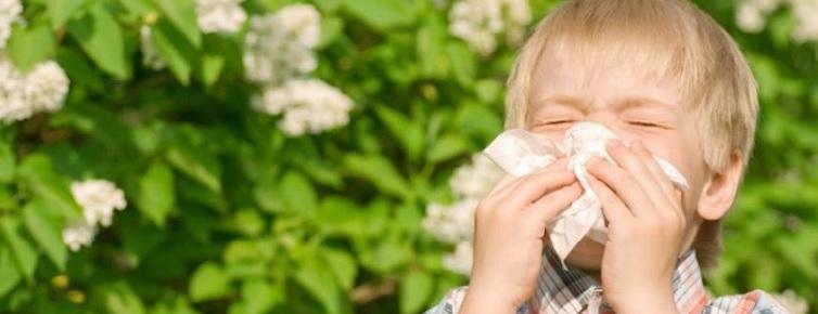 Признаки аллергии на табачный дым у маленького ребенка: как распознать реакцию, и снять проявления